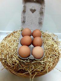 eggs6